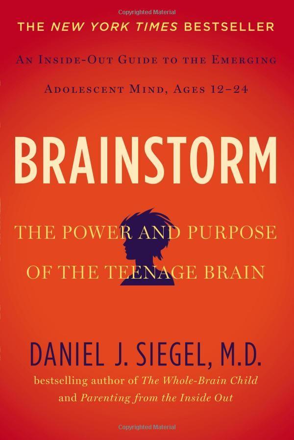 Brainstorm book cover