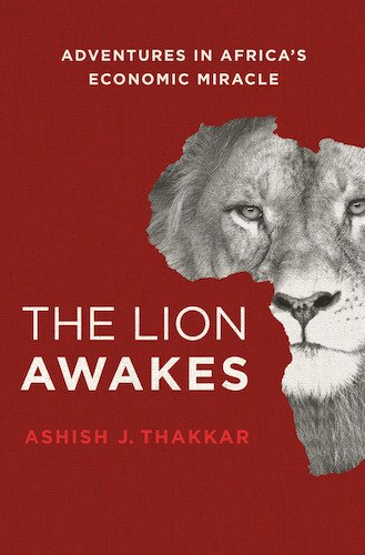 The Lion Awakes book cover